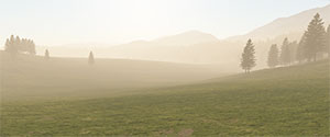 fogpatch